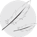 Icon Feather